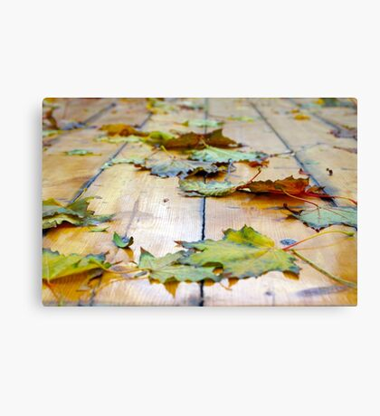 Selective focus on the autumn fallen maple leaves Canvas Print