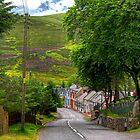 Wanlockhead Village by Tom Gomez