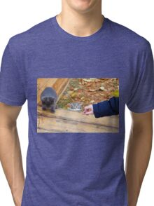 Two homeless kitten playing with a stick Tri-blend T-Shirt