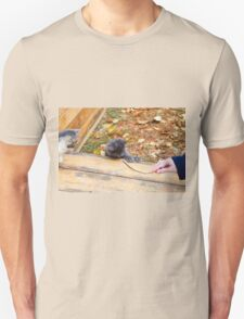 Two pretty little kitten played with a stick in the autumn park T-Shirt