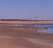 lighthouse landscape by tamarama