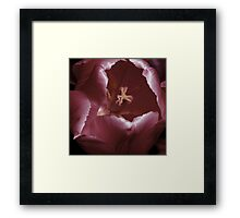 Satin Framed Print