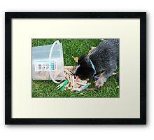Furry peg assistant Framed Print