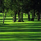 Shadows on the Green! by CeciliaMay