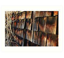 Wooden Sunset Art Print