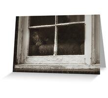 'Window Watchers' Greeting Card