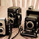 Old Cameras by evergleammm