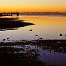 Baxters Jetty, Sandgate at first light. Brisbane, Queensland, Australia.  by Ralph de Zilva