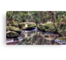 Lovers Leap Creek Canvas Print