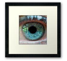 The eye of the beautiful beholder Framed Print