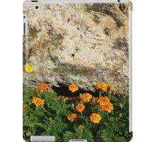 Limestone Boulder and Marigolds iPad Case/Skin