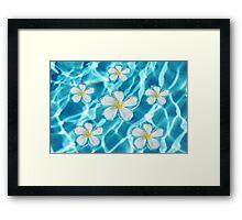 Frangipani flowers Framed Print