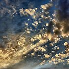 Skyscape by Wendy  Rauw