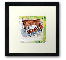 dog on bench Framed Print