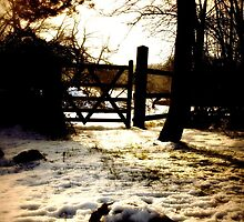 The Copse Gate by emajgen