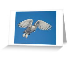 Leaping Snowy  Greeting Card