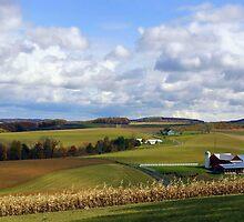 Farmland's Rolling Hills by Gene Walls
