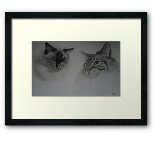 Zoe and Cass Framed Print