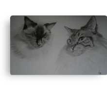 Zoe and Cass Canvas Print
