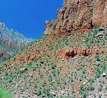 Bandelier  National Monument by Imagery
