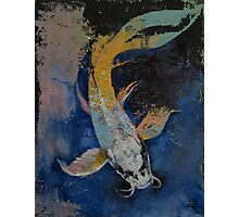 Dragon Koi Photographic Print