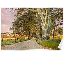Country Road II - Monkhouse Rd, Woodside, The Adelaide Hills Poster