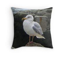 Our Friendly Seagull Throw Pillow