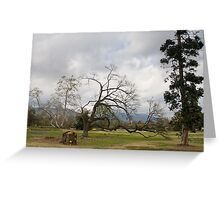 Arcadia scene Greeting Card