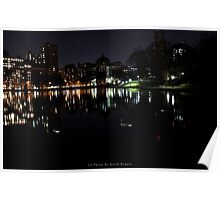 Something About Harlem:Central Park 5th Ave Pond of Ducks Poster