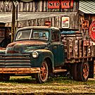 """Old Workhorse From The Past"" by Melinda Stewart Page"