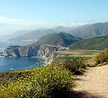 Pacific Coast Highway by Daniel Silva