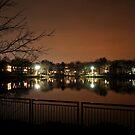 Wilde Lake by Robin Lee