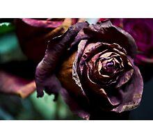Dead Love Photographic Print