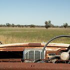 The Last View for a Rusty Car by Phoebe Kerin