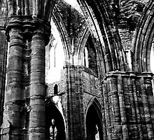 Tintern Abbey Wales by tunna