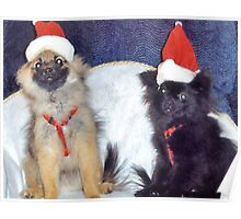 Christmas Puppies Poster