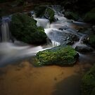 A Gentle Flow by peter  jackson