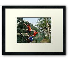 On the Fence - Amos Framed Print