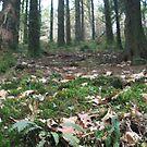 leafy by dopeydi