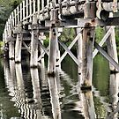 Old Budgewoi Bridge by Robyn Forbes