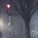 Traffic Light Tree by Tim Ruane