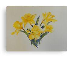 Daffodils           106 Canvas Print
