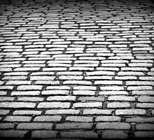 The Cobbled Path.. by Lauren Tucker