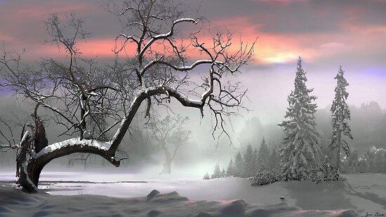 Winter Trees by Igor Zenin