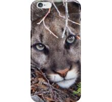 COUGAR iPhone Case/Skin