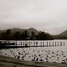 Derwent Water Shore & Derwent Isle. by Lou Wilson