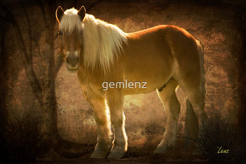 Golden Boy by George Lenz