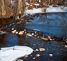 Water, Stone by Bryan D. Spellman
