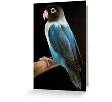 The solitary lovebird Greeting Card