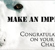 Make An Impression Group – Challenge Winner Banner by Owed to Nature